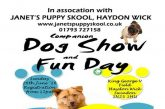 Dog Show and Fun Day to be held in Haydon Wick
