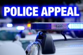 Witnesses to town centre disorder sought