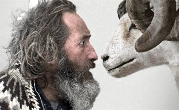 Love, Hate and Knitwear Icelandic Style 'Rams'