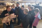 Roves farm entertain Babe before he hits the Wyvern stage